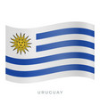 uruguay waving flag icon vector image vector image