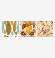 a collection 3 patterns made in natural vector image vector image