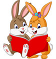 cartoon couple of rabbits reading a book vector image