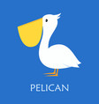 cute pelican isolated vector image