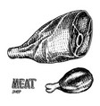 grilled meat raw pork or beef and chicken leg vector image