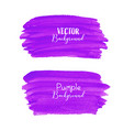 purple brush stroke isolated on white background vector image vector image