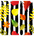 seamless autumn leaves pattern isolated on sketchy vector image vector image