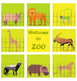 set with zoo animals vector image vector image