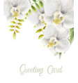 watercolor white orchid flowers greeting card vector image vector image
