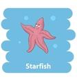 Cut cartoon Starfish vector image