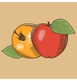 Apples in vintage style Colored vector image vector image