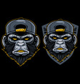 cool monkey mascot vector image
