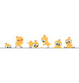 cute chicken border funny bachick little flat vector image vector image