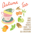 Delicious autumn tea recipe vector image