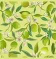 lime floral background seamless fruit vector image vector image
