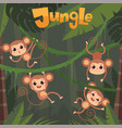 monkey playing little wild animals sitting vector image vector image