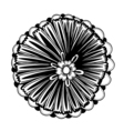 Black outline flower vector image