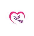 dove heart logo vector image vector image