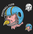 Football Mascot vector image