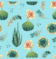 hand drawn decorative seamless pattern with cacti vector image