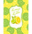 Lemon and Lime vector image