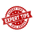 scratched textured expert tips stamp seal vector image vector image