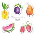 Watercolor fruit stickers set vector image vector image