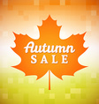 Autumn Sale vector image vector image