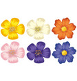 colorful flowers on isolated white background vector image