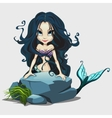 Cute mermaid with long black hair behind a rock vector image vector image