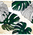 greenery monstera exotic leaves with golden line vector image