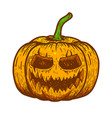 halloween scary pumpkin on white background vector image vector image