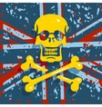 Jolly Roger Flag Background vector image vector image
