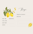 recipe card template with hand drawn lemons vector image