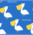seamless pattern pelican vector image vector image