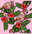 seamless pattern with flamingo embroidery vector image