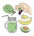 smoothie how make beverage recipe vector image vector image