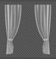 transparent curtains lightweight clear drapery vector image