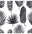 tropical palm leaves black background vector image vector image
