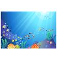 Underwater Sea life Background vector image