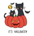 halloween black cat sit on pumpkin cartoon vector image vector image