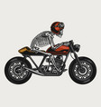 skeleton riding cafe racer motorcycle vector image vector image