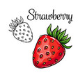 strawberry drawing icon vector image