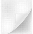 bent corner of paper stock vector image