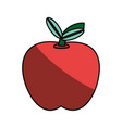 delicious apple fruit vector image vector image