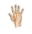 hand showing five fingers from a splash of vector image vector image