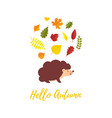 hello autumn greeting card with falling autumn vector image vector image