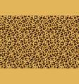 leopard seamless print cheetah jaguar exotic vector image vector image