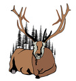 Lying deer and fir trees around him vector image vector image