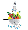 metal colander and fruit colander with fruit vector image