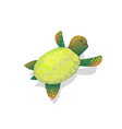 sea turtle clip art childlike cartoon underwater vector image