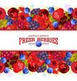 seamless pattern fresh berries vector image vector image