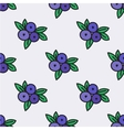 Seamless pattern with blueberry vector image vector image