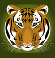 tiger - template design vector image